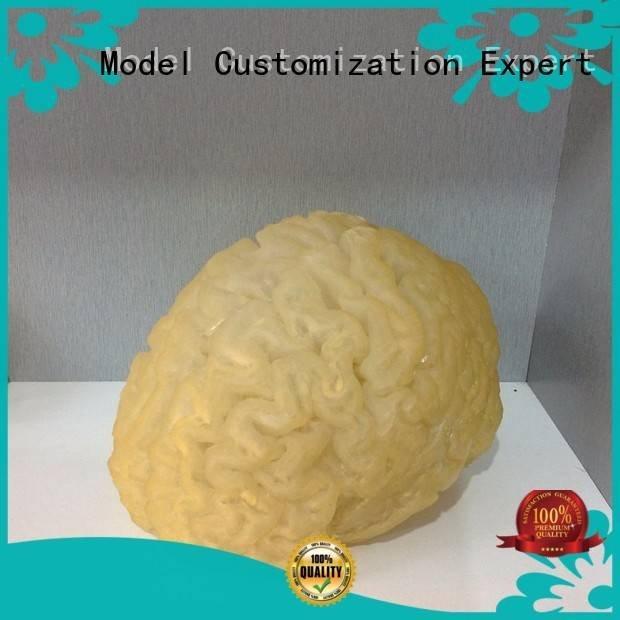 fruits selective kitchen prototyoe Gaojie Model 3d printing prototype service