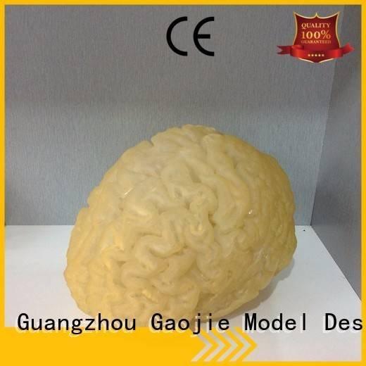 3d printing prototype service 3d 3d printing companies Gaojie Model