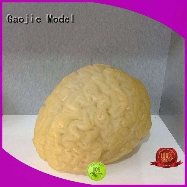 rapid sintering 3d printing prototype service Gaojie Model